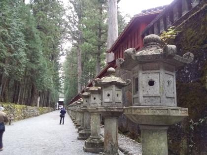 A path of stone lanterns next to the famous Toshogu Shrine