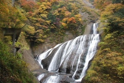 Fukuroda Falls in Autumn  (Picture from http://visitibaraki.net/)