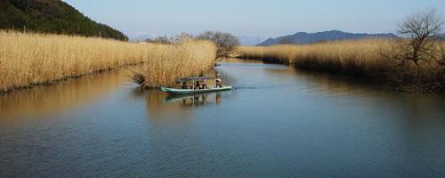Photo from www.shiminken.net