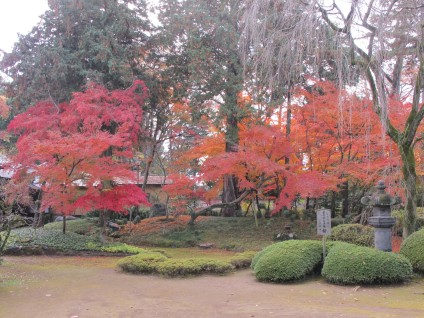 Beautiful red leaves behind the building of Edo Castle