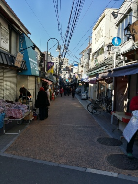 Walking down the narrow street of Yanaka Ginza Shopping St.